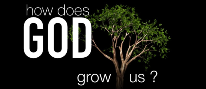 Growing Through The Season of God's Favor-Contemporary